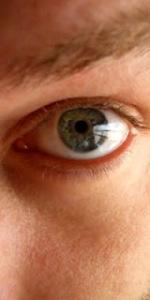 Le miró a los ojos