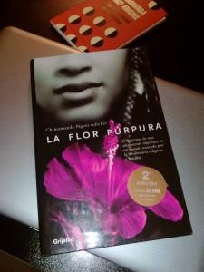 Todos deberíamos ser feministas y La flor púrpura, de Chimimanda Ngozi Adichie